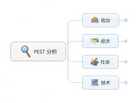 PEST 分析