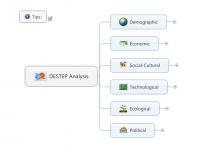 DESTEP Analysis
